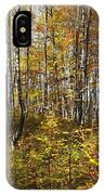Autumn In The Birches Forest IPhone Case