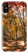 Autumn In The Dunes IPhone Case