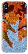 Autumn Leaves 20 IPhone Case