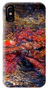 Autumn Leaves Abstract IPhone Case