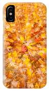 Autumn Leaves II IPhone Case