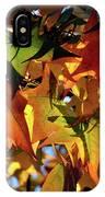 Autumn Leaves2 IPhone Case