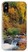 Autumn Magic IPhone Case