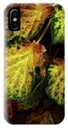Autumn Motif IPhone Case
