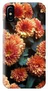 Autumn Mums - A Group Portrait IPhone Case