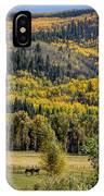 Autumn On A Colorado Range IPhone Case