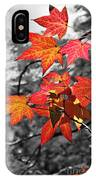 Autumn On Black And White IPhone Case