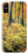 Autumn On Long Pond Road IPhone Case