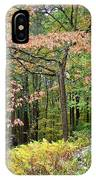 Autumn Paints A Dogwood And Ferns IPhone Case