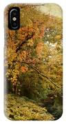 Autumn Palette IPhone Case
