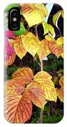 Autumn Raspberries IPhone Case
