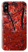 Autumn Red Trees 2015 IPhone Case