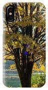 Autumn Splendour IPhone Case