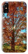 Autumn Star- Paint IPhone Case