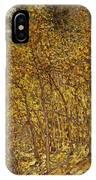 Autumn Sunlight IPhone Case
