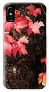 Autumn Surprise IPhone Case