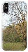 Autumn Tree At Sunset Light IPhone Case