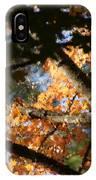 Autumn Trees 2015 Pa 01 IPhone Case