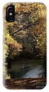 Autumn Trees 3 IPhone Case