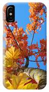 Autumn Trees Artwork Fall Leaves Blue Sky Baslee Troutman IPhone Case