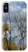 Autumn Trees II IPhone Case