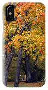 Autumn Trees In Park IPhone Case
