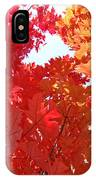 Autumn Trees Red Orange Fall Trees Art Baslee Troutman IPhone Case