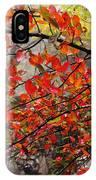 Autumn Trees Rock City IPhone Case