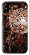 Autumn Wind 1 IPhone Case