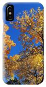 Autumn Yellow Foliage On Tall Trees Against A Blue Sky In Palermo IPhone Case