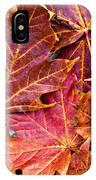 Autumnal Carpet IPhone Case