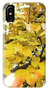 Autumns Gold IPhone Case