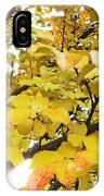 Autumns Gold IPhone Case