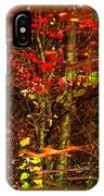 Autumns Looking Glass 2 IPhone Case