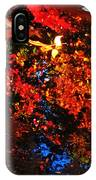 Autumns Looking Glass IPhone Case