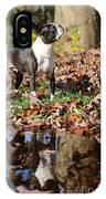 Autumn's Reflection IPhone Case
