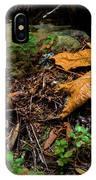 Autumn's Treasure IPhone Case