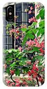 Azaleas At The Window   IPhone Case