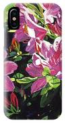 Azaleas With Dew Drop IPhone Case