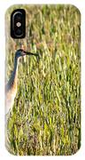 Babcock Wilderness Ranch - Sandhill Crane IPhone Case
