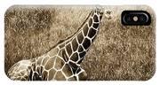 Baby Giraffe In Grasses IPhone Case