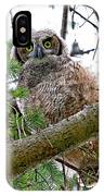 Baby Great Horned Owl IPhone Case