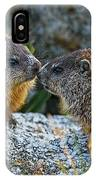 Baby Groundhogs Kissing IPhone Case by Bob Orsillo