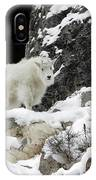 Baby Mountain Goat IPhone Case