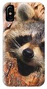 Baby Raccoon IPhone Case