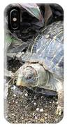 Baby Tortoise IPhone Case