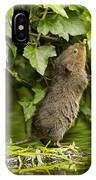 Baby Water Vole Stretching Up IPhone Case