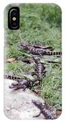 Babycrocs IPhone Case