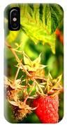 Backyard Garden Series - One Ripe Raspberry IPhone Case