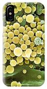 Bacteria On Hops Leaf, Sem IPhone Case